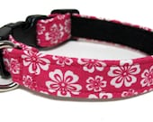 Floral Print Collars, Adjustable Martingale or Quick Release. Pansies, Posies, Roses, Flowers Dog collars