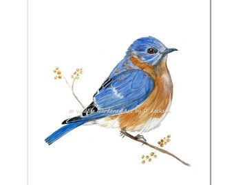 Bluebird Watercolor Art Print, Contemporary Wild Bird Art, Modern Rustic Wall Art, Farmhouse Decor, Bird Lovers Gift
