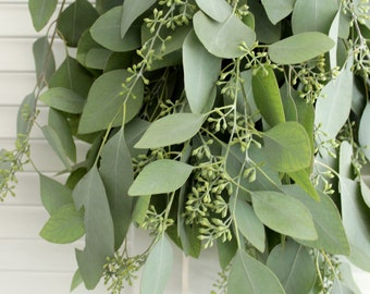 Fresh Seeded Eucalyptus Bunch- 5-7 stem for wedding, home decor, party, gift to loved ones.