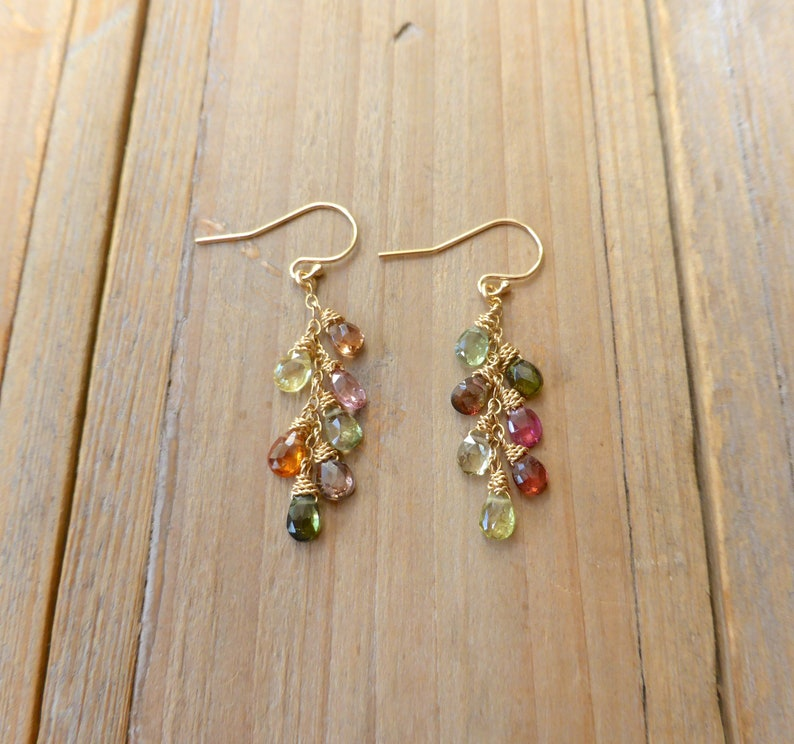 Mixed Rainbow Tourmaline Briolette Drop Earrings Gold image 0