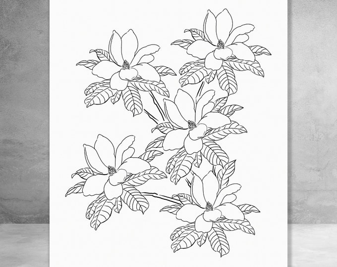 Magnolia In Ink | Canvas Gallery Wraps | Various Sizes