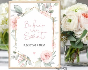 Blush Pink Babies are Sweet Treat Sign, Blush Floral Baby Shower Decor, Babies are Sweet, Please Take a Treat Sign, Editable Template