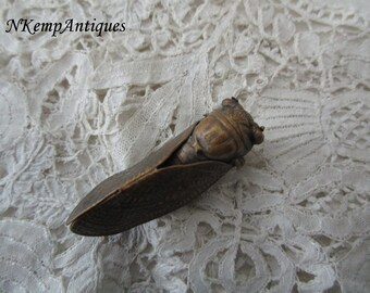 Antique cicada brooch 1910 for the collector