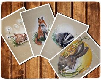 Card & Print Sets