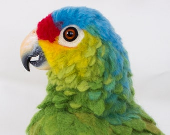 READY TO SHIP Rico the Red-Lored Amazon Parrot: Needle felted animal sculpture