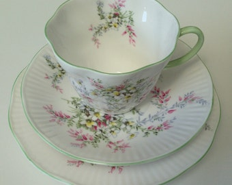 Queen's Rosina China Teacup, Saucer and Plate