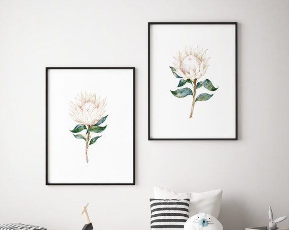 Watercolor Protea Flowers Botanical Print Set - Nursery Print Wall Art Home Decor Baby Girl - Boy Room Printable - DIGITAL DOWNLOAD