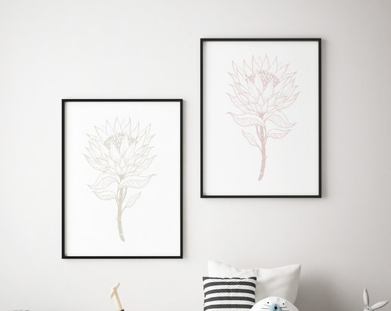 Protea Drawing Botanical Print Set - Boho Nursery Print Wall Art Home Decor Baby Girl - Boy Room Printable - DIGITAL DOWNLOAD