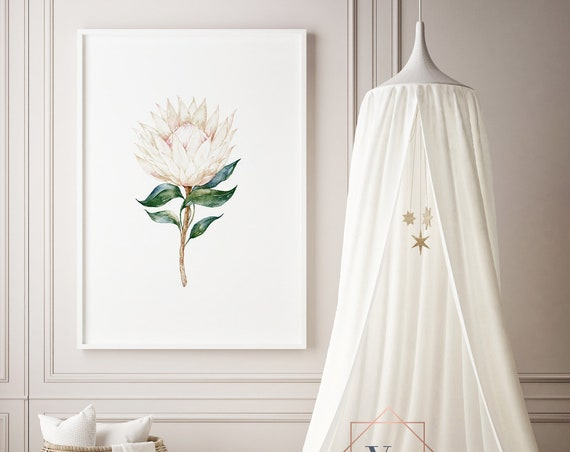 Protea 2 Watercolor Flower Floral Print- Nursery Decor Print Wall Art Baby Girl - Boy Room Printable Decor - DIGITAL DOWNLOAD