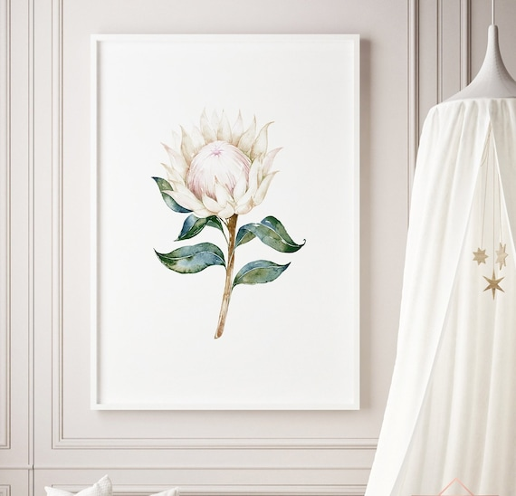 Protea Watercolor Flower Floral Print- Nursery Decor Print Wall Art Baby Girl - Boy Room Printable Decor - DIGITAL DOWNLOAD