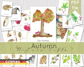 DEUTSCHE Autumn Resources | German Printable Poster & Flashcards | INSTANT DOWNLOAD