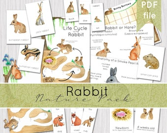 Rabbit & Lagomorph Nature Study Pack | European Rabbit Resources | Easter Bunny | INSTANT DOWNLOAD