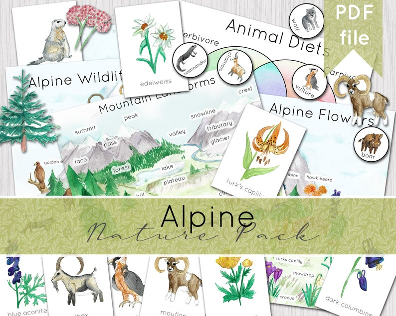 Alpine Nature Pack  Mountain Nature Study  Instant Download image 0