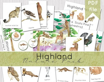 Highland Wildlife Nature Pack   Watercolour Scottish Wildlife Learning Set   INSTANT DOWNLOAD