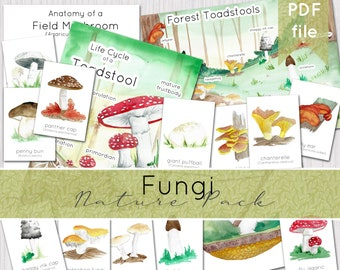 Fungi Nature Pack   Autumn Woodland   Nature Study   INSTANT DOWNLOAD