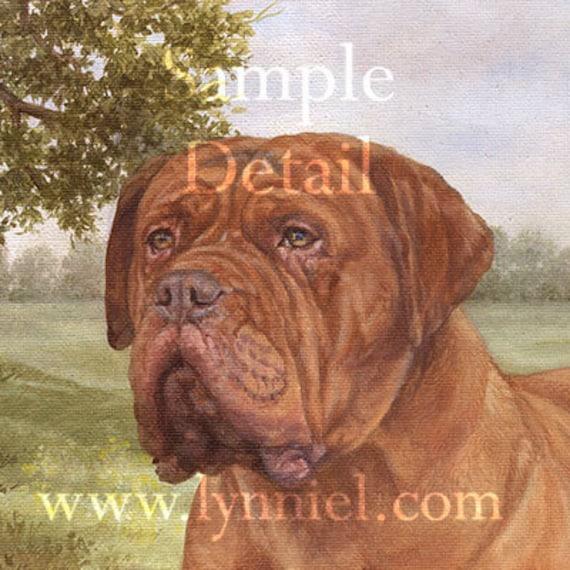 DOGUE DE BORDEAUX  Giclee dog print by Lynn Paterson