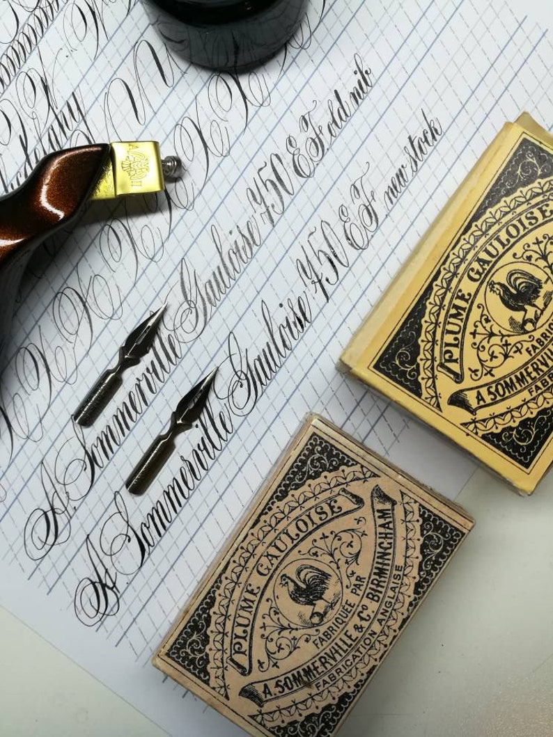 Plume Gauloise 750 EF A.Sommerville New stock Vintage nib  modern calligraphy Styles of Pointed Pen Script Spencerian Copperplate Penmanship
