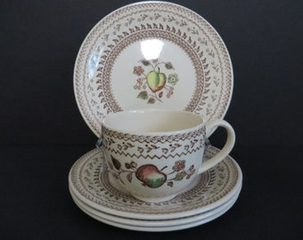 Stafforsdshire Old Granite Fruit Sampler Cup and Saucer by Johnson Bros
