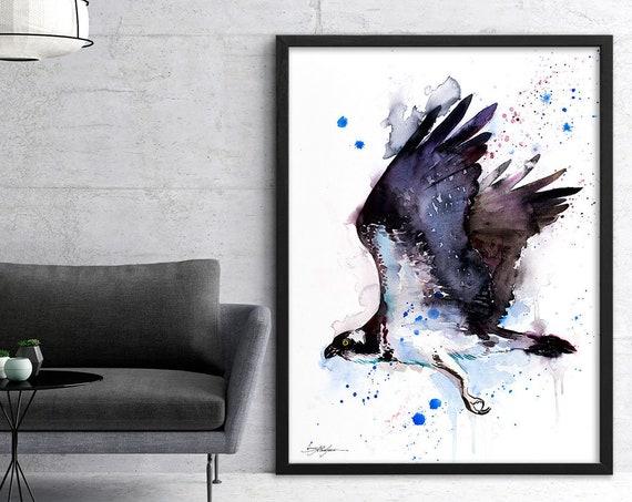 Osprey watercolor framed canvas by Slaveika Aladjova, Limited edition, art, animal watercolor, animal illustration,bird art
