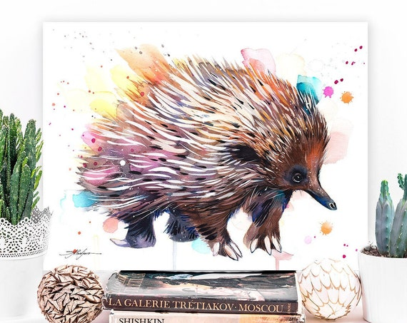 Short-beaked echidna watercolor painting print by Slaveika Aladjova, art, animal, illustration, home decor, Nursery, gift, Wildlife,wall art