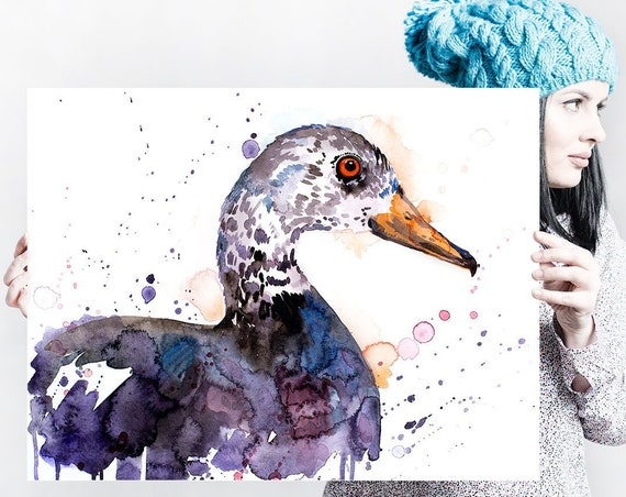 White-winged duck watercolor painting print by Slaveika Aladjova, animal, illustration, bird, home decor, wall art, Wildlife, Contemporary