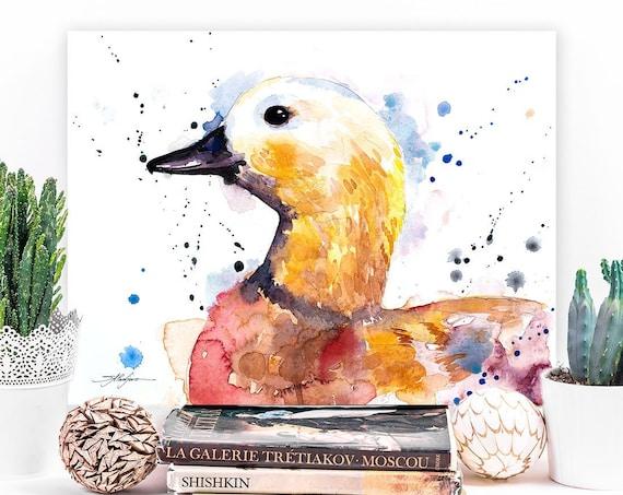 Ruddy shelduck Duck watercolor painting print by Slaveika Aladjova, art, animal, illustration, bird, home decor, wall art, gift, farm