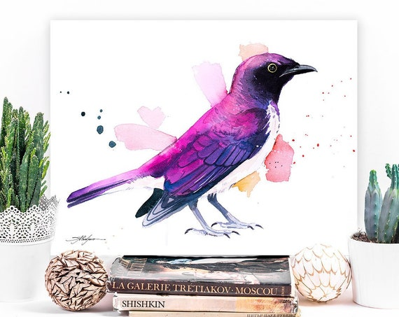 Amethyst starling or Violet-backed starling watercolor painting print by Slaveika Aladjova,art, animal, bird, home decor, wall art, gift,