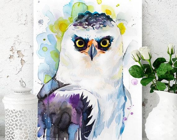 Black-and-white hawk-eagle watercolor painting print by Slaveika Aladjova, art, animal, illustration, bird, home decor, wall art, portrait