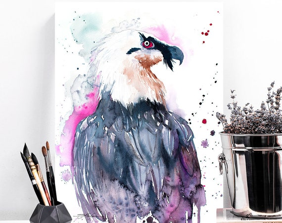 Bearded vulture watercolor painting print by Slaveika Aladjova, art, animal, illustration, bird, home decor, wall art, gift, portrait,