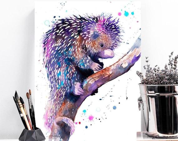 Prehensile-tailed porcupine watercolor painting print by Slaveika Aladjova, animal, illustration, wall art, gift, portrait, Contemporary