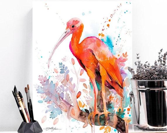 Scarlet Ibis watercolor painting print by Slaveika Aladjova, art, animal, illustration, bird, home decor, wall art, gift, Wildlife