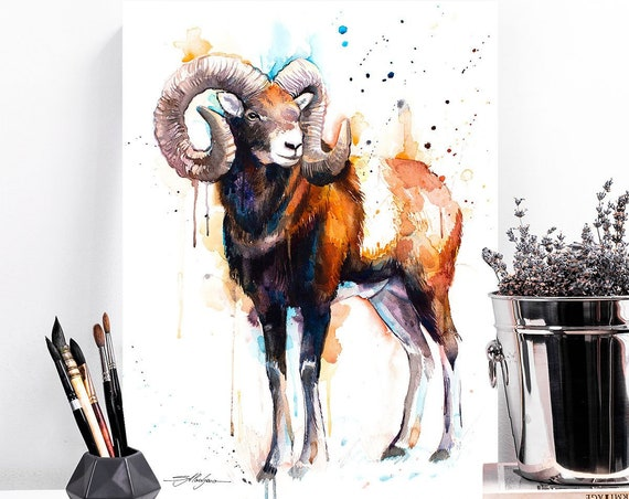 Mouflon ram watercolor painting print by Slaveika Aladjova, ram, art, animal, illustration, home decor, wall art, gift,portrait,Contemporary