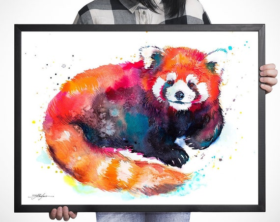 Red Panda Bear watercolor framed canvas by Slaveika Aladjova, Limited edition, art, animal watercolor, animal illustration,