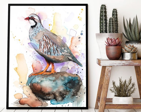 Red-legged partridge watercolor framed canvas by Slaveika Aladjova, Limited edition, art, animal watercolor, animal illustration,bird art
