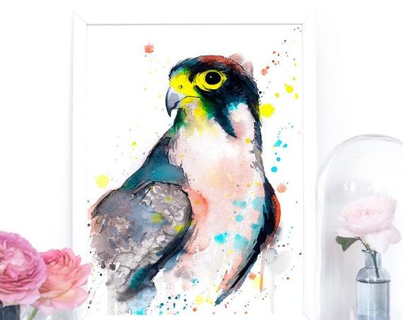 Lanner falcon watercolor painting print by Slaveika Aladjova, art, animal, illustration, bird, home decor, wall art, gift, portrait,