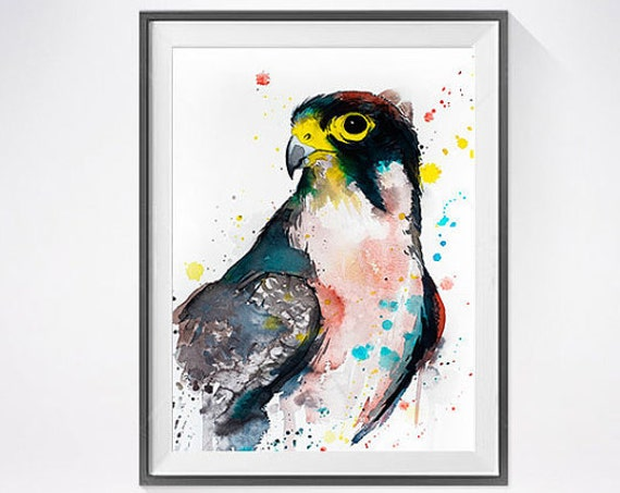 Original Watercolour Painting- Lanner falcon art, animal, illustration, animal watercolor, animals paintings, animals, portrait,