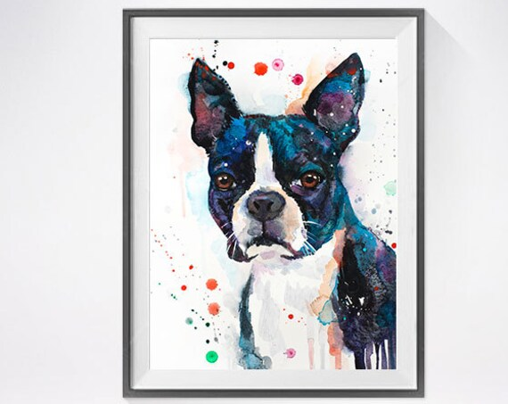 Original Watercolour Painting- Boston Terrier art, animal, illustration, animal watercolor, animals paintings, animals, portrait,