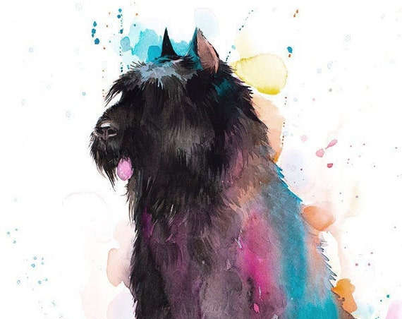 Original Watercolour Painting- Bouvier des Flandres art, animal, illustration, animal watercolor, animals paintings, animals, portrait,