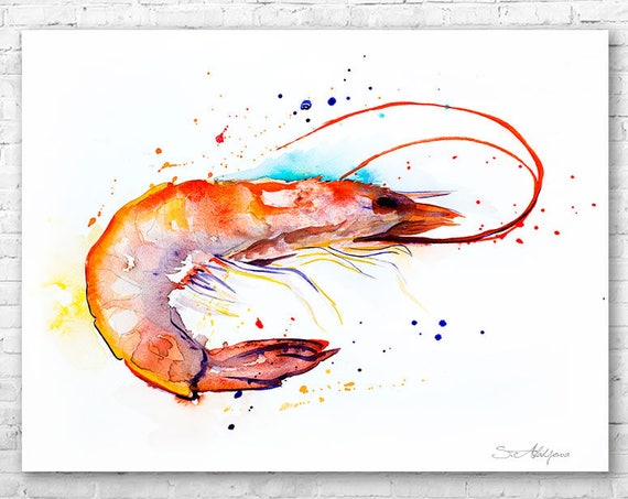 Shrimp watercolor painting print by Slaveika Aladjova, art, animal, illustration, Sea art, sea life art, home decor, Wall art
