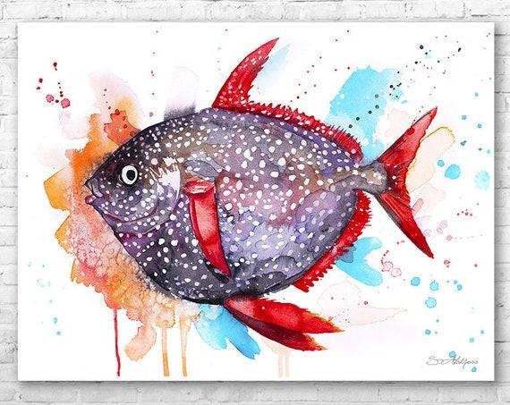 Opah Moonfish Sunfish watercolor painting print by Slaveika Aladjova, art, animal, illustration, Sea art, sea life, nautical, ocean art,Fish
