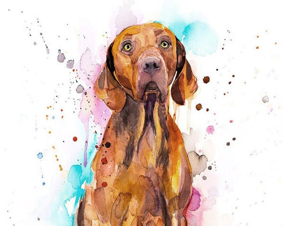 Original Watercolour Painting- Vizsla Dog art, animal, illustration, animal watercolor, animals paintings, animals, portrait,