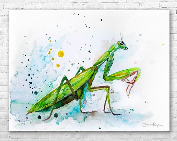 Mantis watercolor painting print by Slaveika Aladjova, art, animal, illustration, home decor, Nursery, gift, Wildlife, wall art
