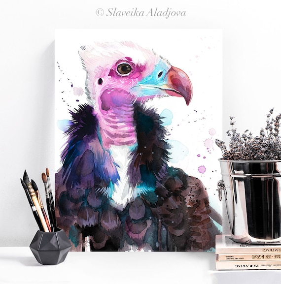 White-headed vulture watercolor painting print by Slaveika Aladjova, art, animal, illustration, bird, home decor, wall art, gift, portrait,