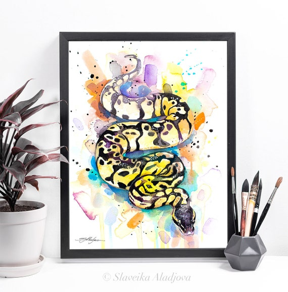 Pastel Ball Python Snake watercolor framed canvas by Slaveika Aladjova, Limited edition, art, animal watercolor, animal illustration,