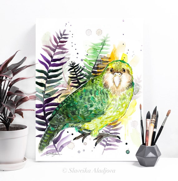 Kakapo, Owl parrot watercolor painting print by Slaveika Aladjova, art, animal, illustration, bird, home decor, wall art, Contemporary