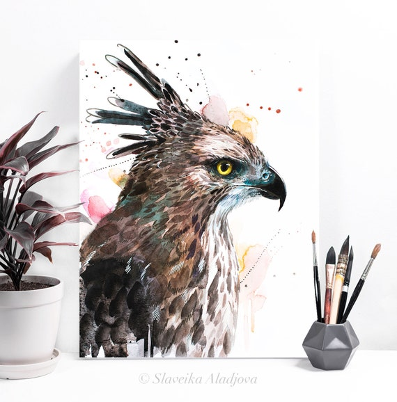 Changeable Hawk-eagle watercolor painting print by Slaveika Aladjova, art, animal, illustration, bird, home decor, wall art, gift, portrait,