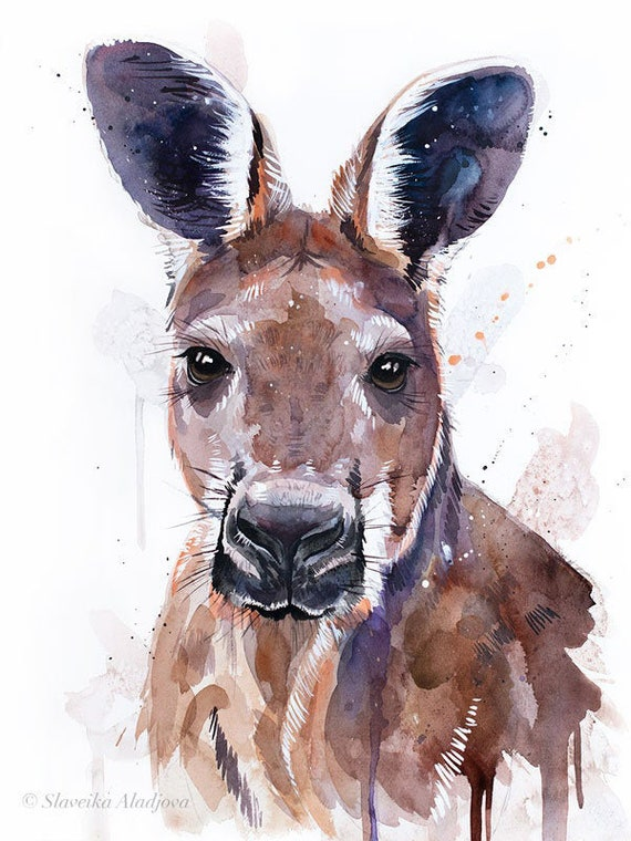 Original Watercolour Painting- Red kangaroo art, animal, illustration, animal watercolor, animals paintings, animals, portrait,