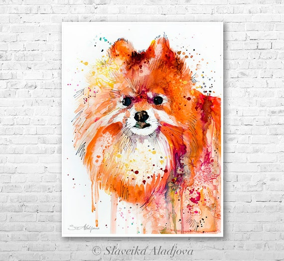 Pomeranian watercolor painting print by Slaveika Aladjova, animal, illustration, home decor, Nursery, Contemporary, dog art, wall art