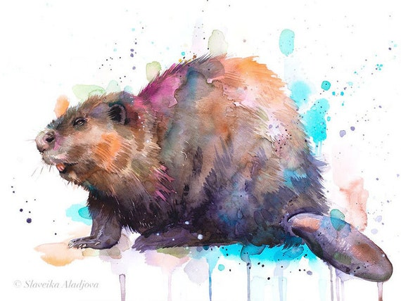 Original Watercolour Painting- Beaver art, animal, illustration, animal watercolor, animals paintings, animals, portrait,