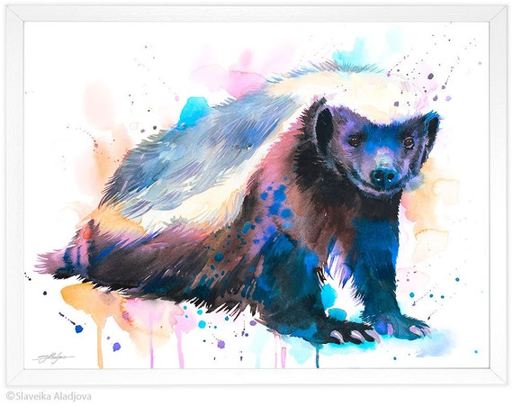 Honey badger watercolor painting print by Slaveika Aladjova, art, animal, illustration, home decor, Nursery, gift, Wildlife, wall art